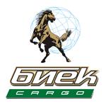 Транспортная компания «Биек cargo»